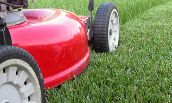Lawn Care in Columbus OH Lawn Care Services in Columbus OH Quality Lawn Care in Columbus OH