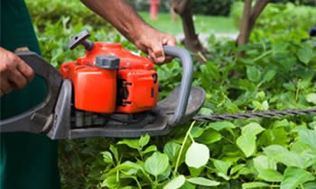 Shrub Removal in Columbus OH Shrub Removal Services in Columbus OH Shrub Care in Columbus OH Landscaping in Columbus OH
